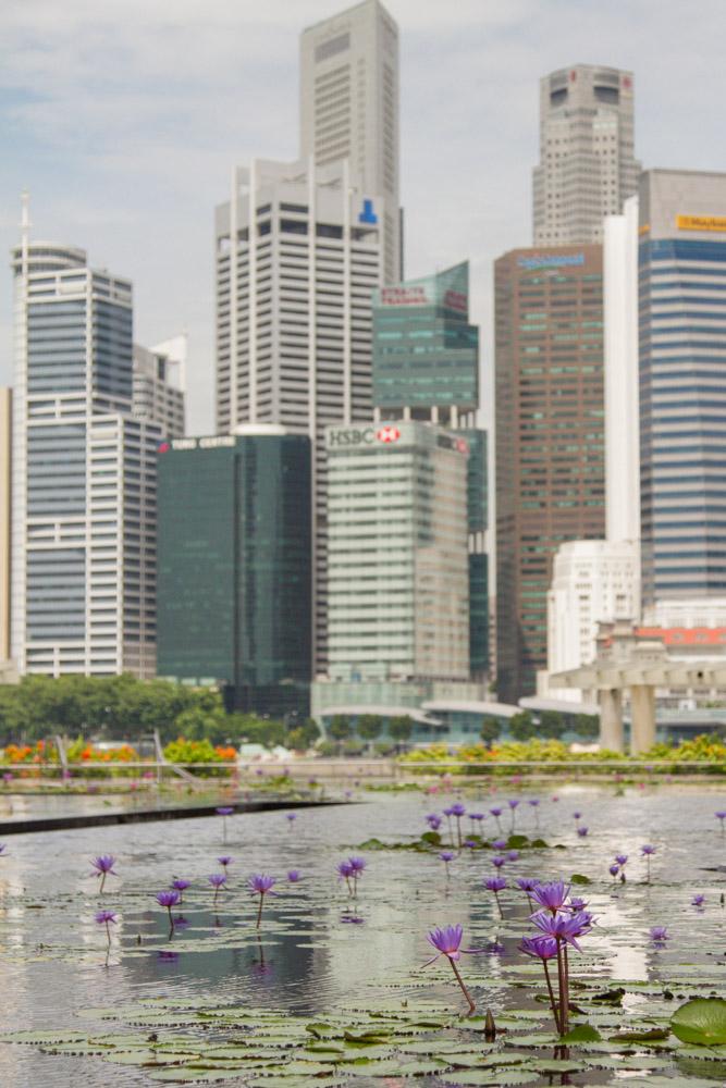 singapore-49